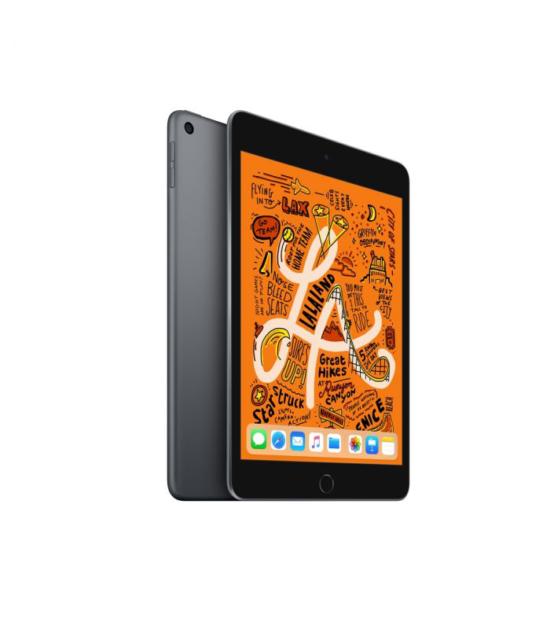 Apple iPad mini 5 Wi-Fi 64GB Space Gray