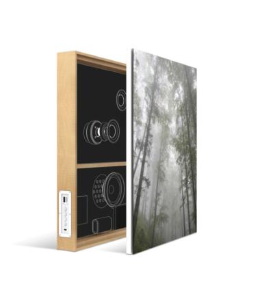ENERGY SISTEM Frame Speaker Forest zvučnik
