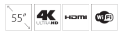 Televizor HISENSE H55A6140